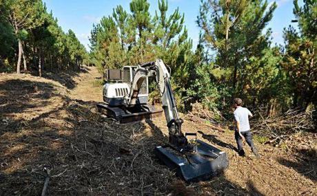 Los afectados por el incendio de Barchín del Hoyo piden el control del aprovechamiento de la madera
