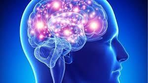 La Sociedad Española de Neurología y su Fundación del Cerebro realizarán pruebas gratuitas para revisar la salud cerebral de los conquenses