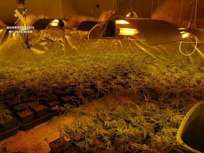 La Guardia Civil ha detenido a una persona por delitos de cultivo y/o elaboración de estupefacientes y defraudación del fluido eléctrico