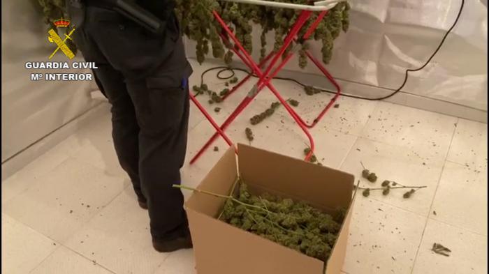 La Guardia Civil ha detenido a 15 personas por delitos de tráfico de drogas y cultivo o elaboración de estupefacientes