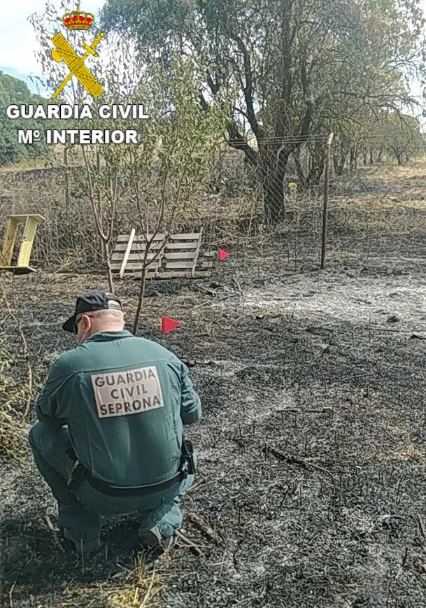 La Guardia Civil esclarece un delito de incendio forestal e investiga a su presunto autor