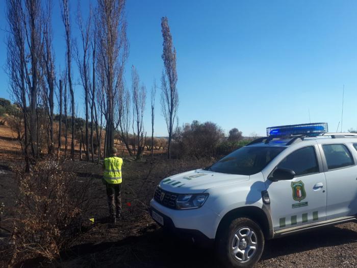 Las B.I.I.F. del Cuerpo de Agentes Medioambientales de Castilla-La Mancha investigan los incendios de Almorox y Toledo