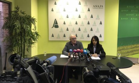 ASAJA pide un cambio para la línea actual de reestructuración de viñedo
