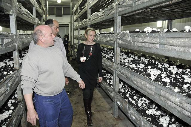 Casero traslada a los productores de champiñón de Villarta la importancia de exportar sus productos para generar empleo