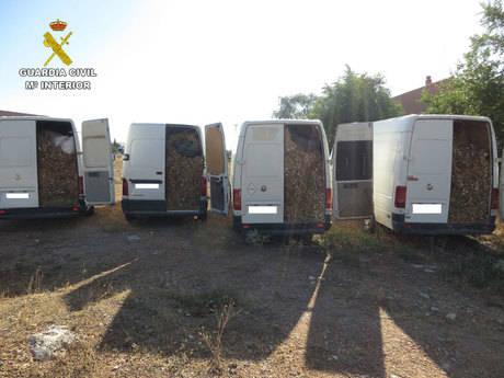 Detenidas ocho personas por sustraer 13.000 kilos de ajos