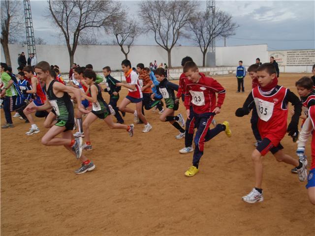 Los alumnos del IES Diego Jesús Jiménez se clasifican para participar en la fase final de campo a través dentro del programa  de deporte escolar