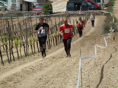La localidad albaceteña de Villamalea acoge la  7ª prueba de la liga nacional de orientación