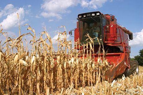 La patronal informa a las empresas agroalimentarias de que pueden solicitar una bonificación en los préstamos ICO
