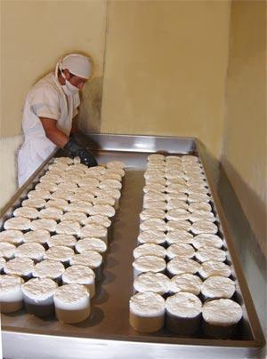 La Asociación de fabricantes de quesos de Cuenca denuncia la falta de financiación