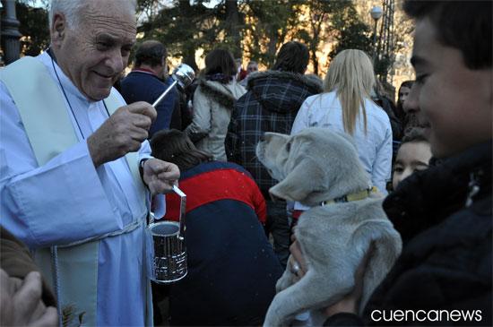 Cuenca acoge la tradicional bendición de animales en honor a San Antón