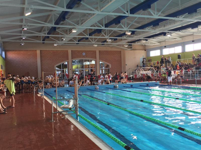 la piscina luis oca a acog a la ii jornada de deporte
