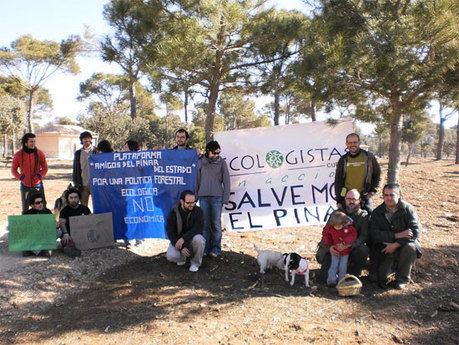 Se movilizan en defensa del patrimonio forestal