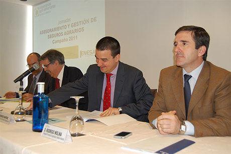 El seguro de viñedos se incorpora por primera vez en 2011 al nuevo sistema de cobertura de riesgos creciente