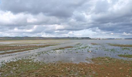 El Tribunal Supremo no admite el recurso de la Junta contra la anulación de protección de la Laguna del Hito