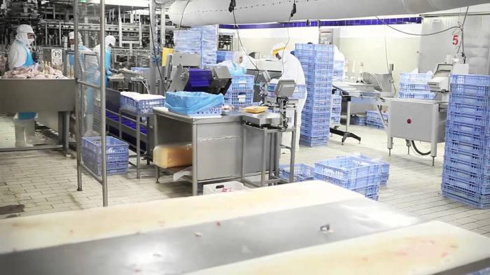 Denuncian vulneración de seguridad laboral en dos mataderos de la provincia