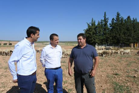 Más de 5.000 ganaderos se han beneficiado de las ayudas directas del Plan de Ganadería Extensiva