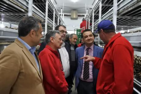El Gobierno regional apuesta por la innovación y la agrupación de productores para conseguir una industria agroalimentaria más fuerte