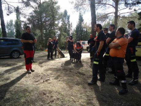 El Servicio de Emergencias 112 de Castilla-La Mancha ha coordinado más de 50 incidentes por desapariciones de personas en el primer semestre del año