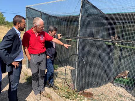 La Junta respalda la recuperación de aves rapaces en la región