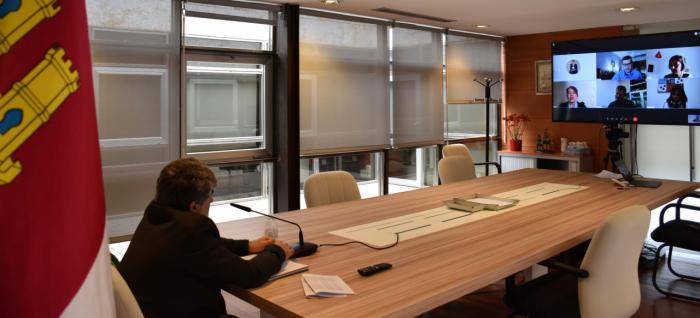 Durante una videoconferencia con el Colegio de Trabajo Social de Castilla-La Mancha