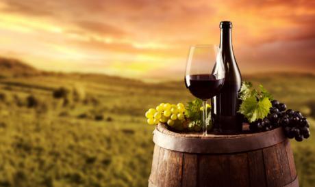 ADIMAN pone en valor a la ruta del vino de La Manchuela en el Día Mundial del Enoturismo