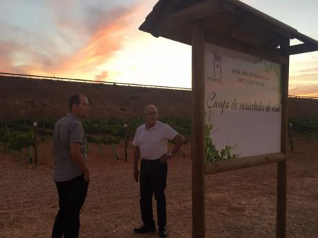 """IU visita la Cooperativa """"Virgen de Manjavacas"""" para analizar el desarrollo de la vendimia 2017"""