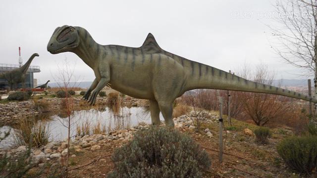 La tercera fase del Museo de Paleontología supondrá profunda 'metamorfosis'