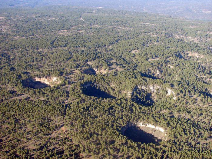 Se recibe el primer certificado internacional FSC por su gestión forestal sostenible en el monte conquense de Los Palancares